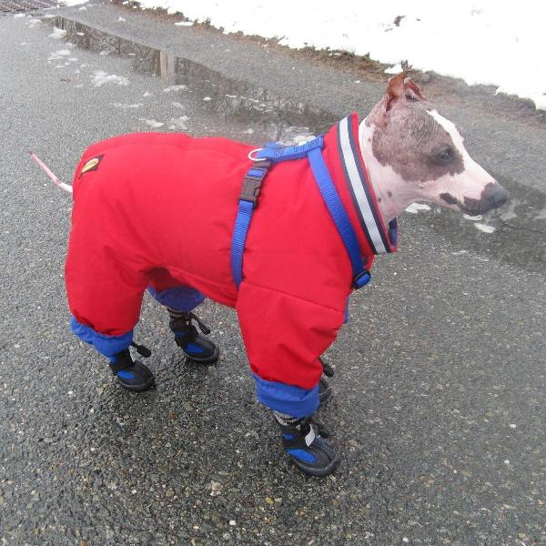 Muttluks Reversible Dog Snowsuit Red Navy With Same