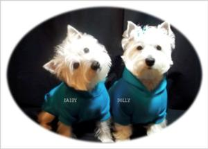 DAISY & DOLLY