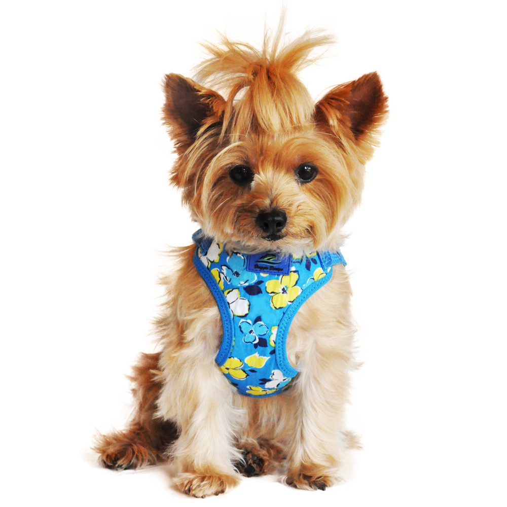 Wrap and Snap Choke Free Dog Harness - Hawaiian Blue