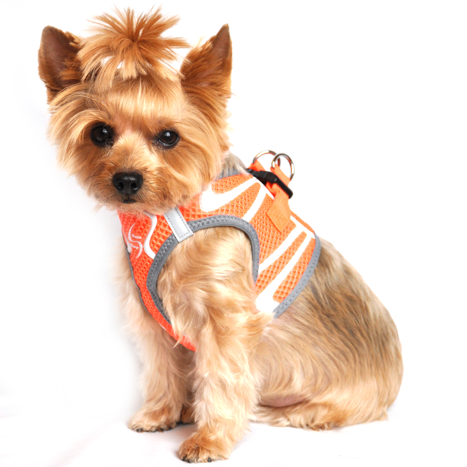 American River Choke Free Dog Harness Neon Sport Collection - Iridescent Orange