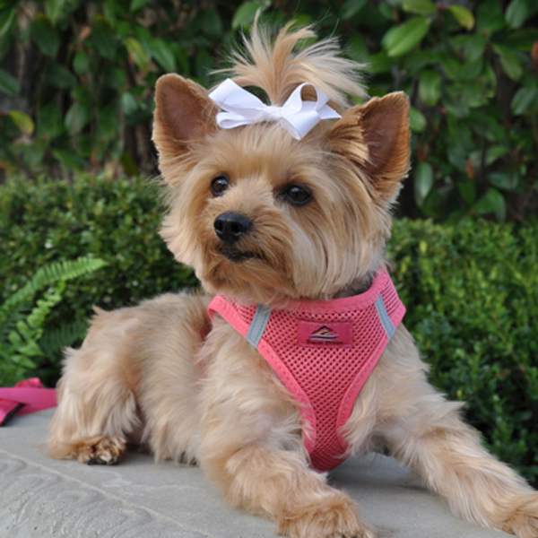 American River Ultra Choke-Free Mesh Dog Harness - Honeysuckle Pink