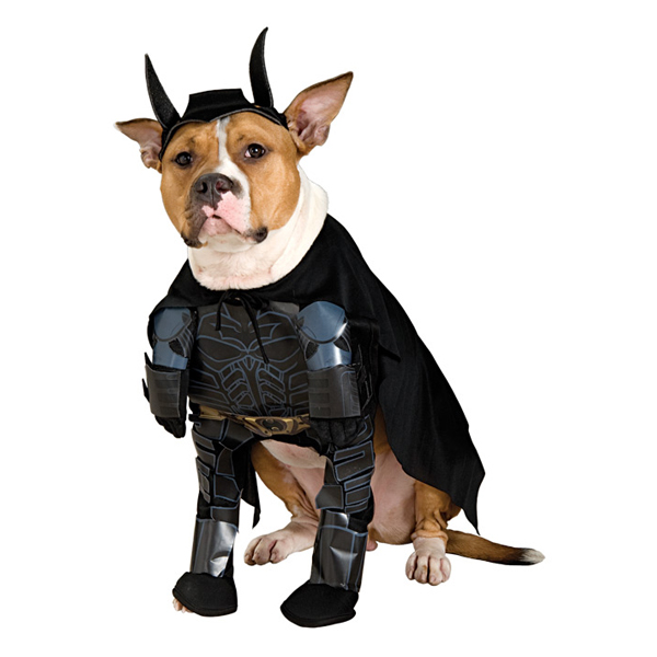 'The Dark Knight' Batman Dog Halloween Costume