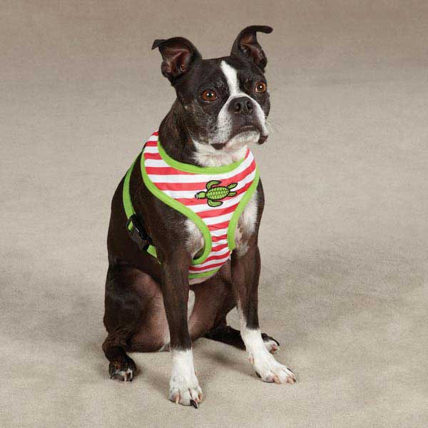 Beachcomber Dog Harness by Zack & Zoey - Raspberry