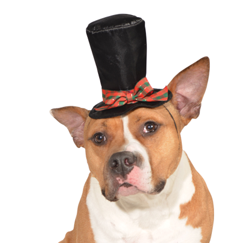 Caroler Dog Hat