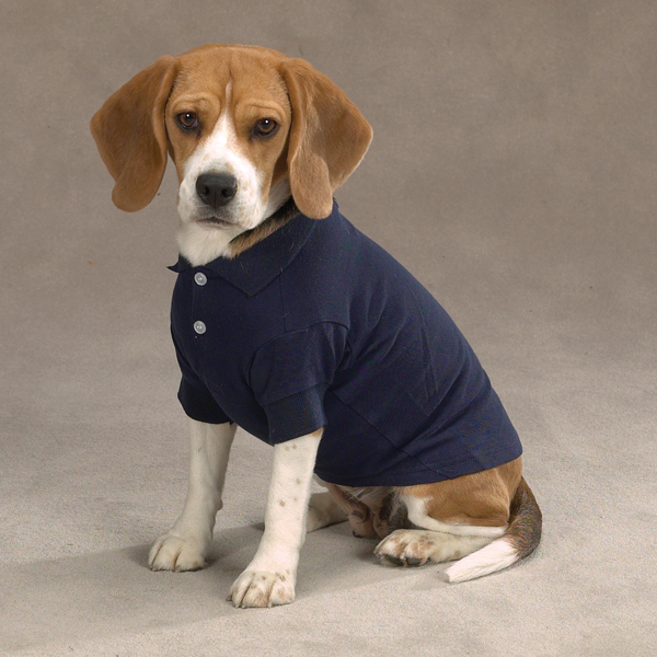 Casual Canine Basic Polo Dog Shirt - Navy