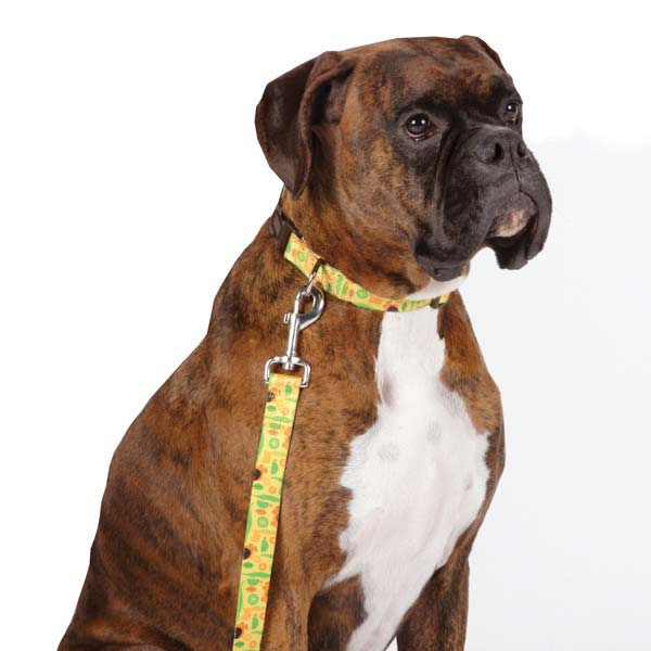Casual Canine Jungle Bunch Dog Leash
