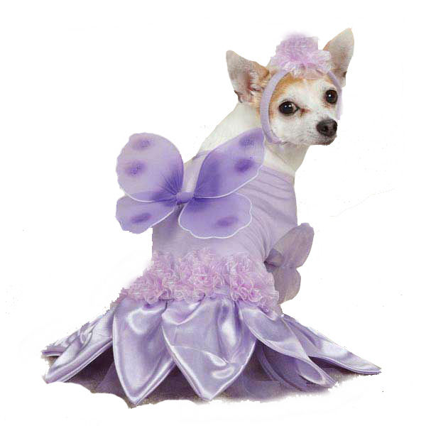 Casual Canine Sugar Plum Fairy Dog Costume - Violet