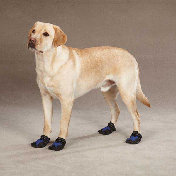 X-Treme Weather Dog Boots - Blue