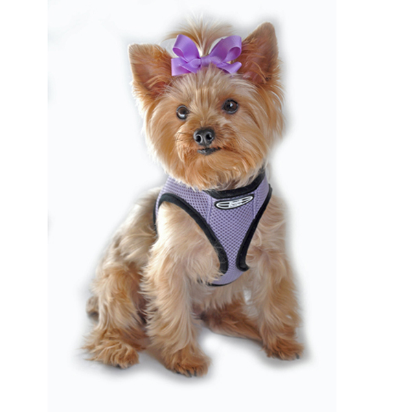 Choke-Free Mesh Step-In Dog Harness - Lavender