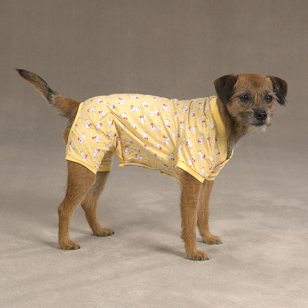 Cozy Dog Pajamas - Yellow Duck