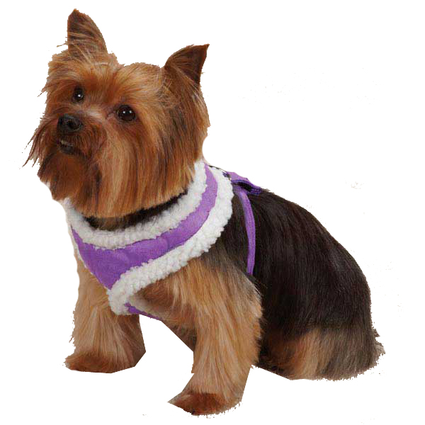 Cozy Sherpa Dog Harness by East Side Collection - Ultra Violet