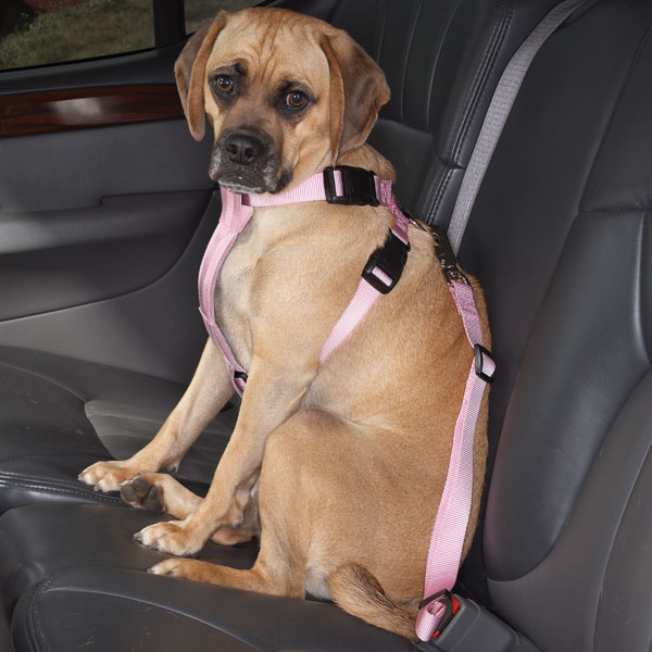 Cruising Companion Car Harness - Light Pink