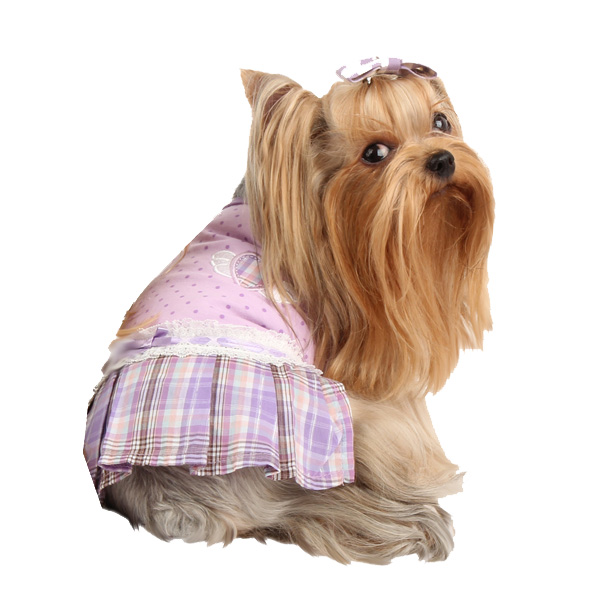 Dainty Dog Dress by Pinkaholic - Violet
