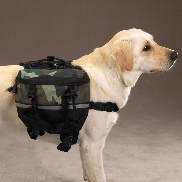 Day Trippers Dog Backpack - Green Camo | BaxterBoo