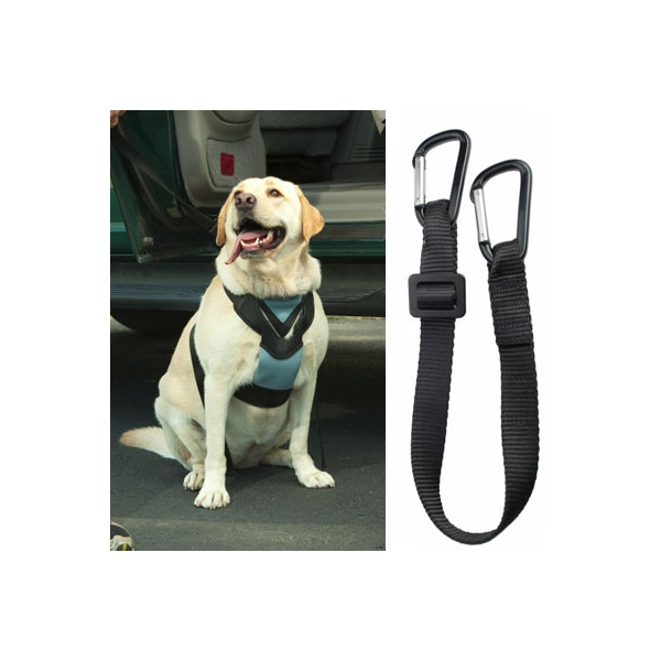 Dog Auto Harness with Tether