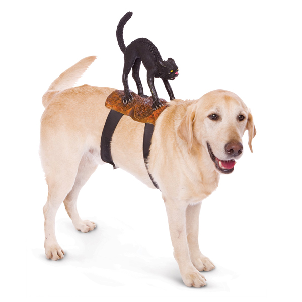 Dog Riders Harness Halloween Costume - Cat