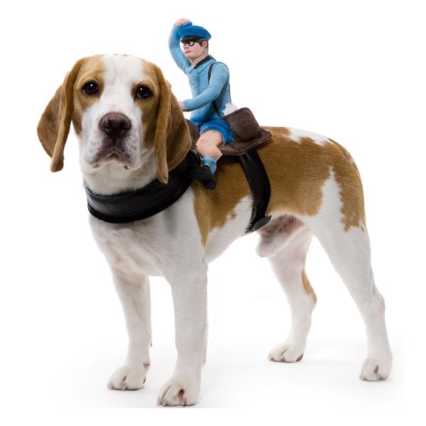 Dog Riders Harness Halloween Costume - Mailman