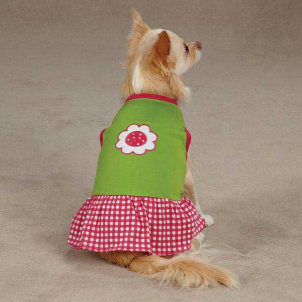East Side Collection Gingham Sweeties Dog Dress - Green