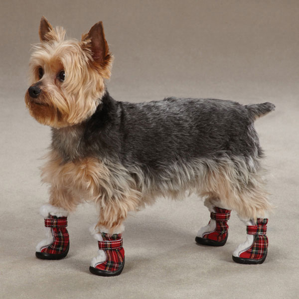 East Side Collection Holiday Tartan Dog Boots