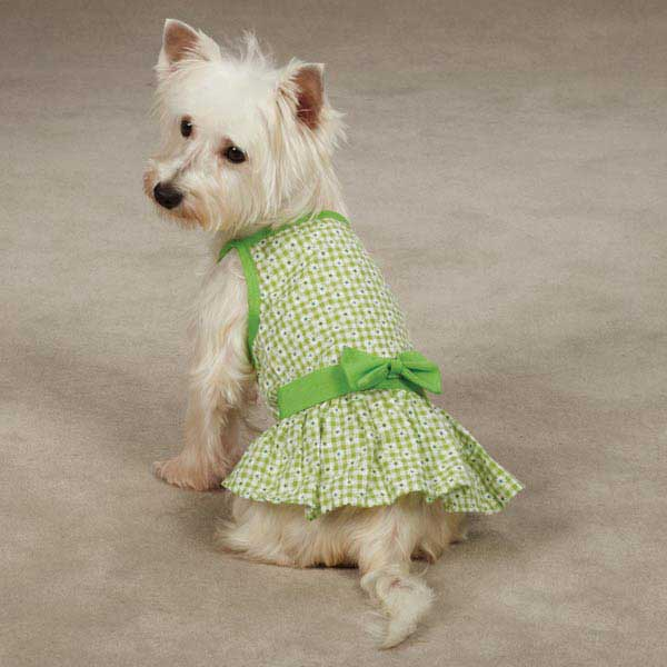 East Side Collection Miss Daisy Dog Dress - Green