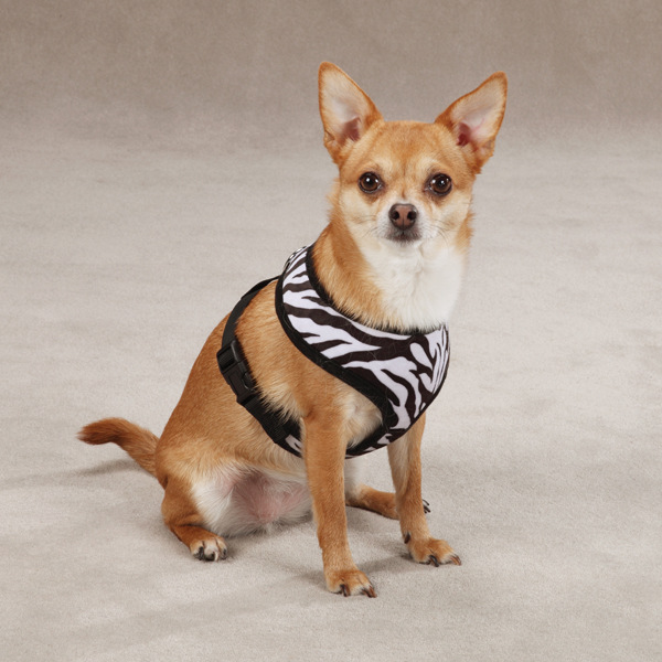 East Side Collection Plush Animal Print Harness - Zebra