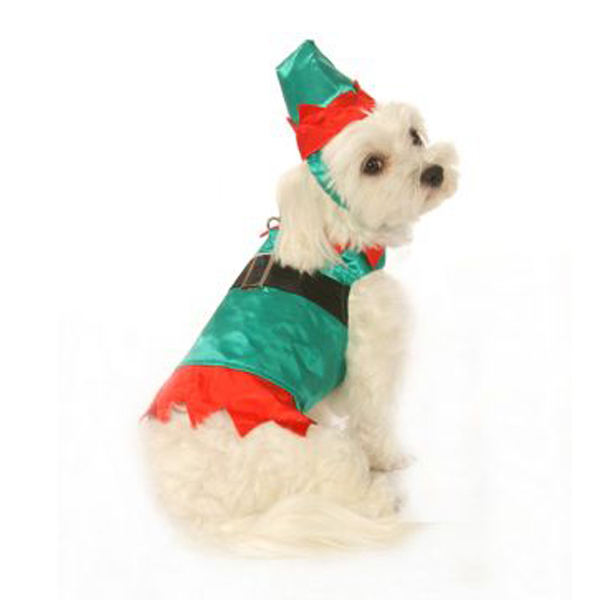 Elf Boy Dog Harness Suit w/ Hat and Leash