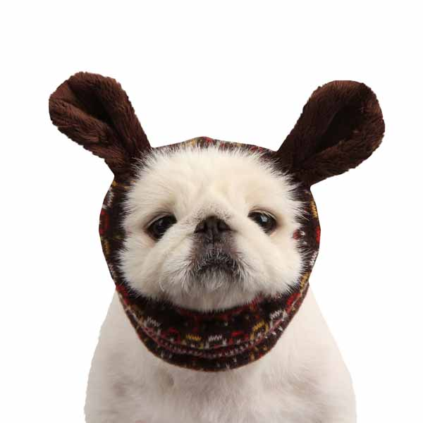 Express Dog Snood by Puppia - Brown