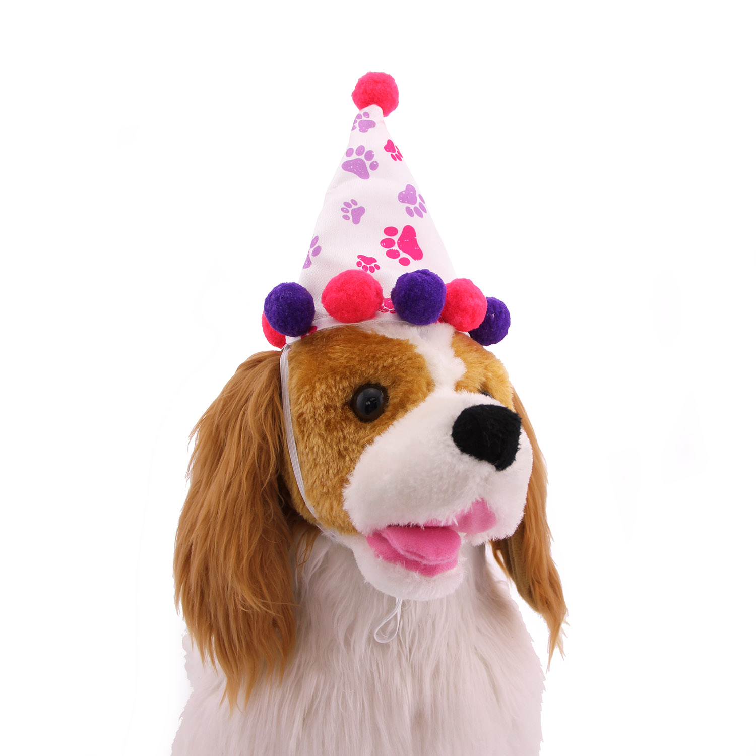 Girl Paw Print Birthday Dog Hat