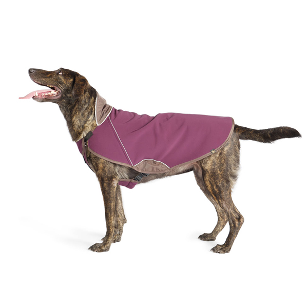 Gold Paw Cascade Winter Dog Coat - Eggplant