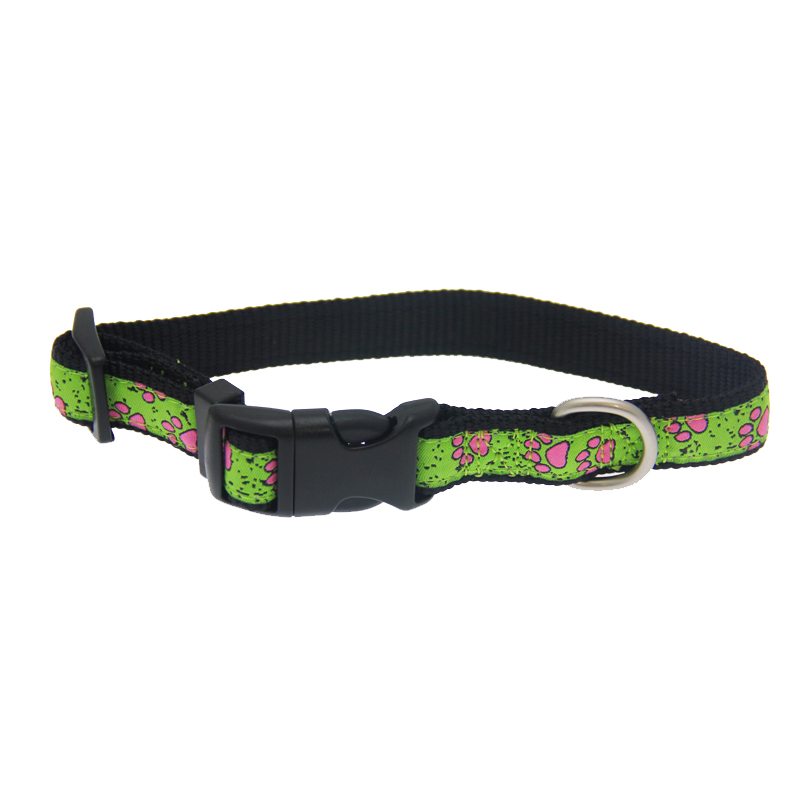 Gracie Paws Dog Collar