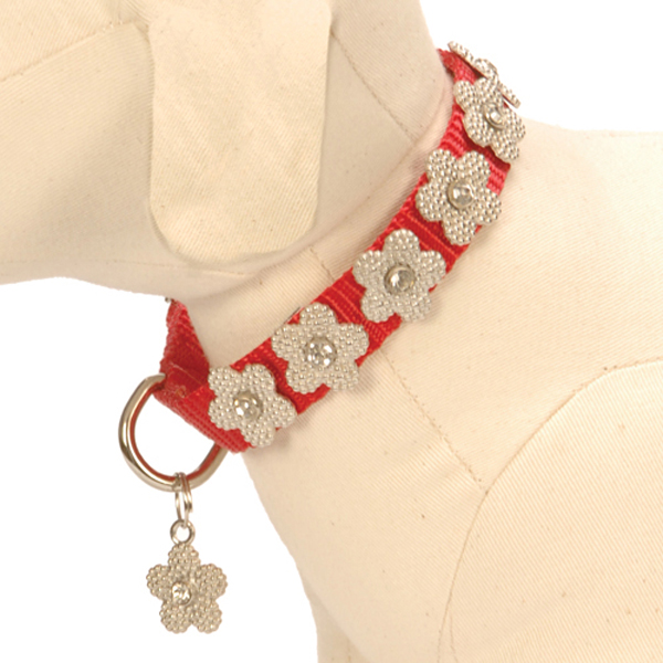Gracie Silver on Red Daisy Dog Leash
