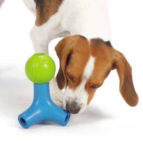 Grriggles Canine Challenge Jack and Ball Set Dog Toy