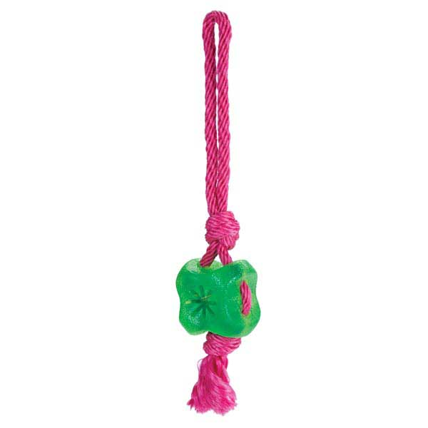 Grriggles FUNdamentals Treat Tugs Dog Toy - Parrot Green