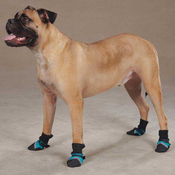 Guardian Gear Brite Dog Boots - Bluebird