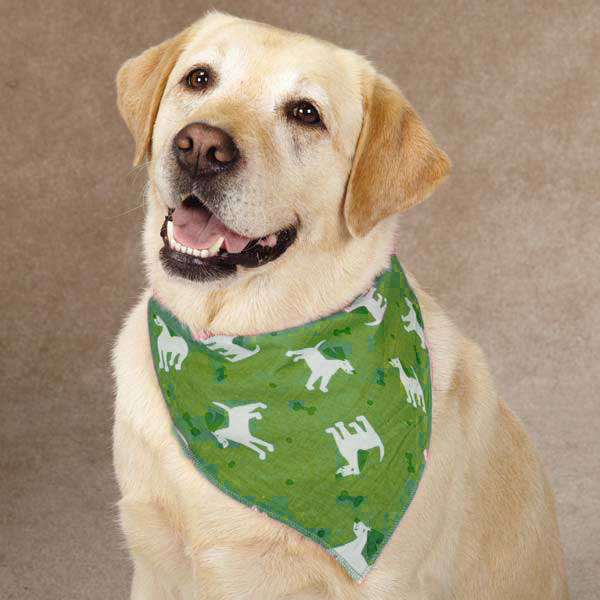 Guardian Gear Dogs and Bones Insect Shield Dog Bandana - Green