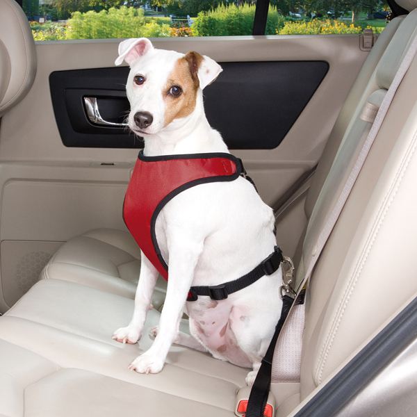 Guardian Gear Ride Right Dog Car Harness - Crimson