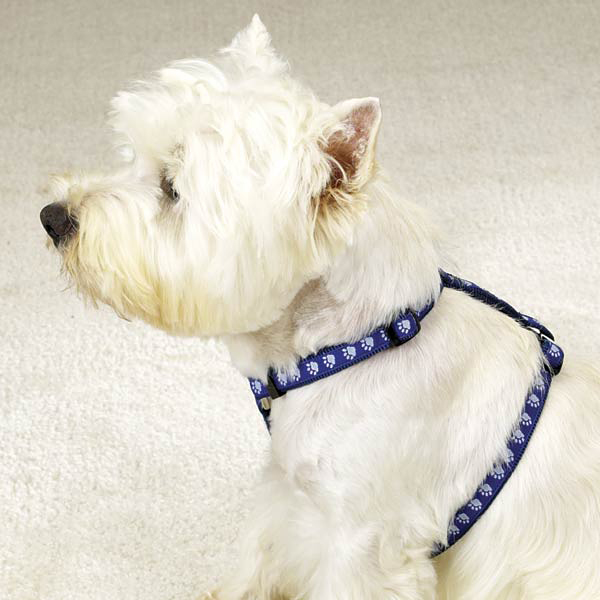 Guardian Gear Two Tone Pawprint Harness - Blue
