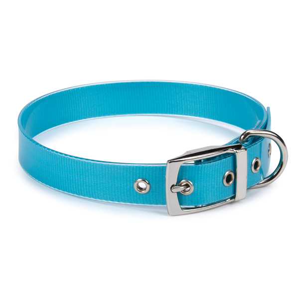 Guardian Gear Waterproof Dog Collar - Bluebird