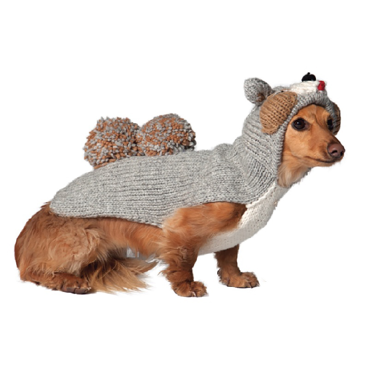 Large Dog Squirrel Sweater