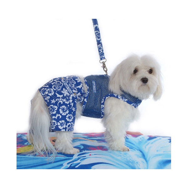 Hawaiian Print Dog Board Shorts - Blue