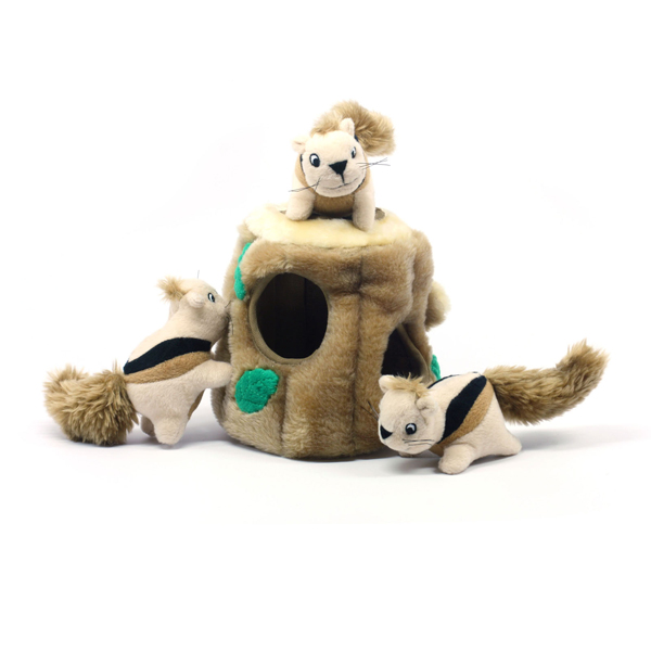 Hide-A-Squirrel Plush Dog Toy