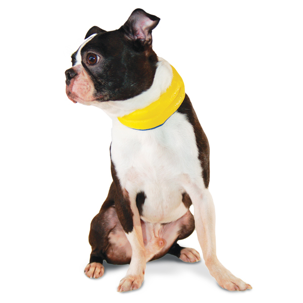 iCool Dog Scarf by Dogo - Yellow