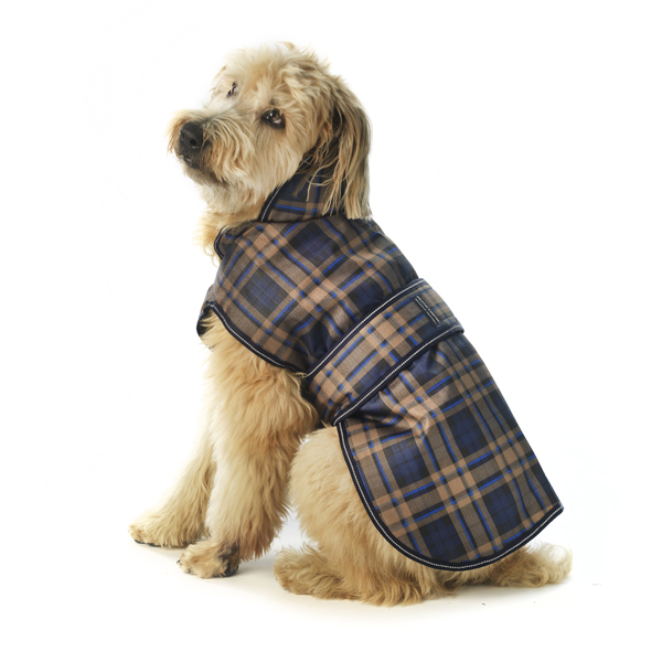 Kodiak Dog Coat - Blue Plaid