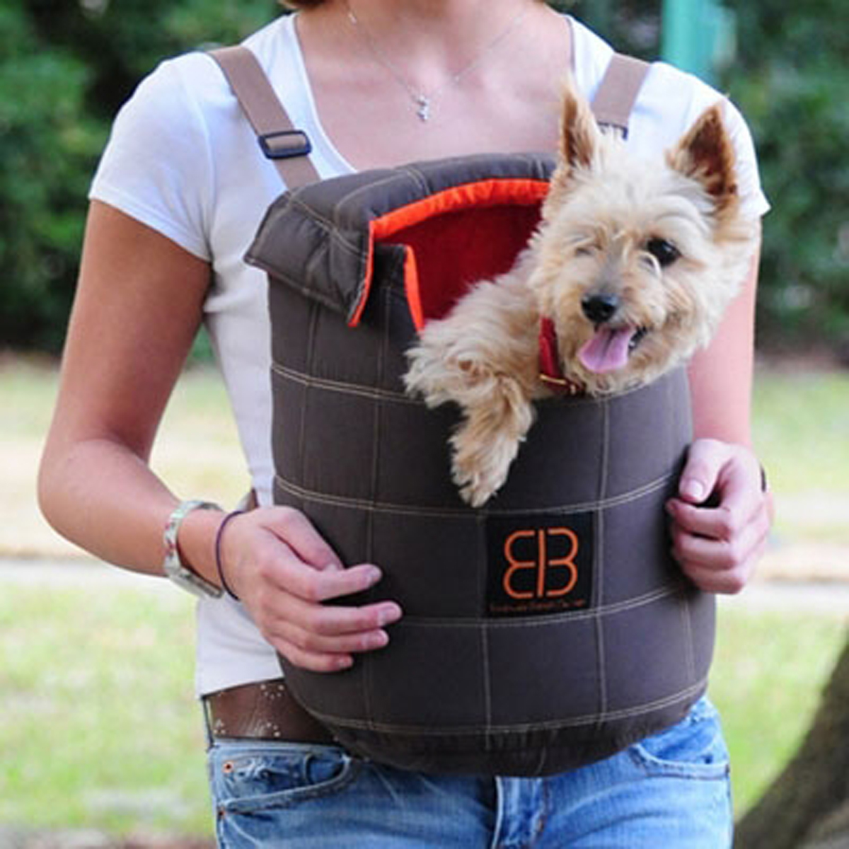 Front Pack For Small Dogs