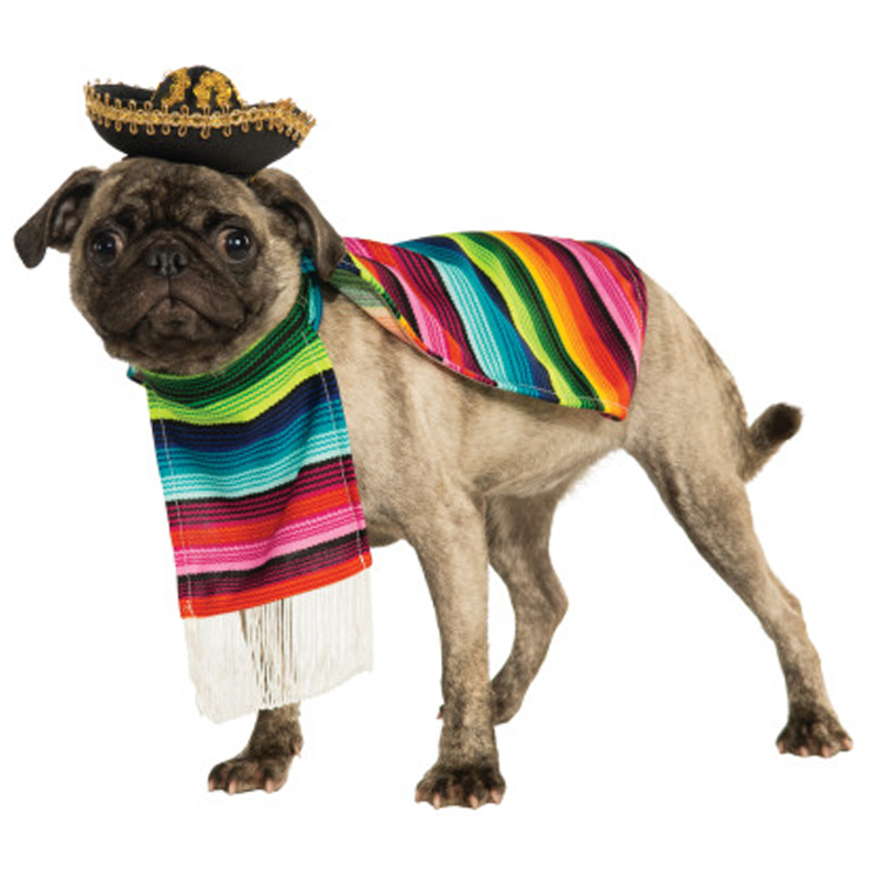Mexican Sarape Dog Costume