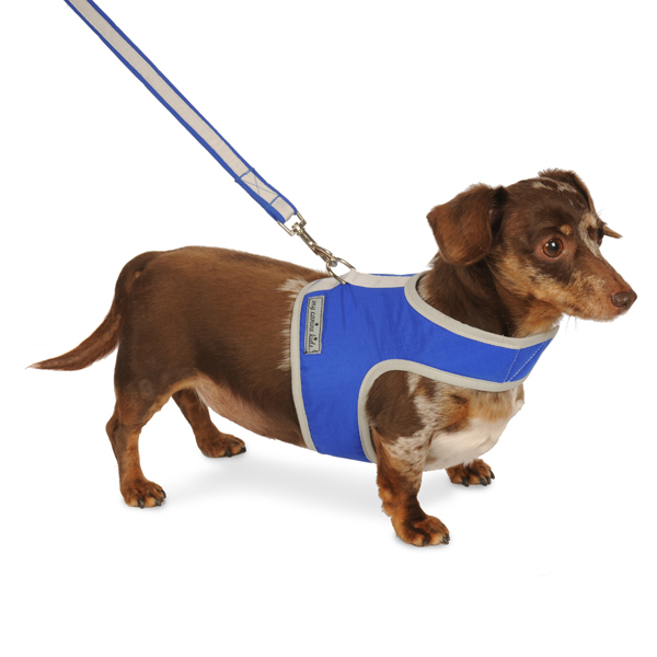 Nylon-Fleece Dog Vest Harness - Sapphire