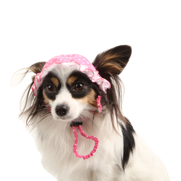 Oceanic Dog Hat by Pinkaholic - Pink
