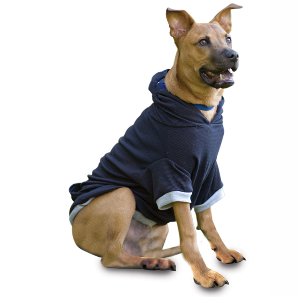 On-the-Go Thermal Dog Hoodie - Black