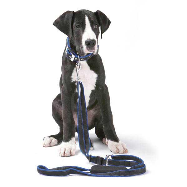 PatentoPet Vario Dog Leash - Black
