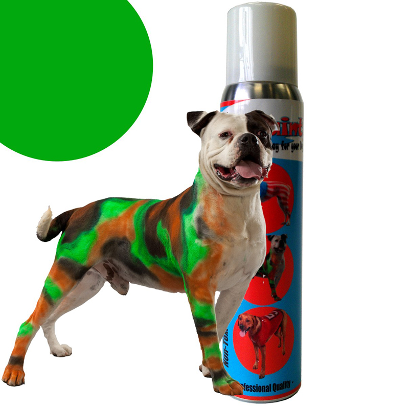 PetPaint Color Dog Hair Spray - Pug Purple with Same Day Shipping ...